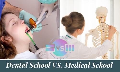 Dental School VS. Medical School