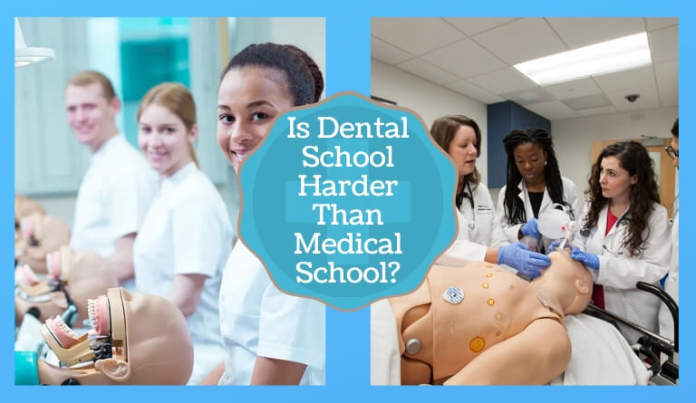 Is Dental School Harder Than Medical School
